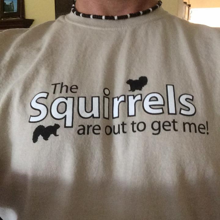 Animals, Squirrel, Wildlife, clothing, t-shirt