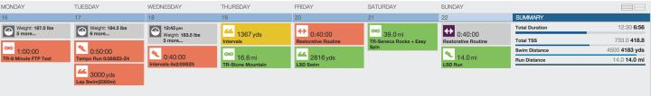 Training Peaks-IMCDA 2015 Training Week #8